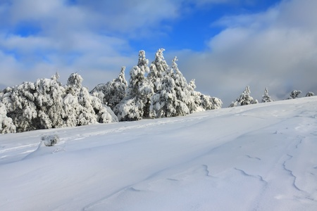 Winter in the mountain photo