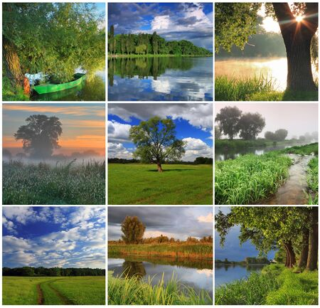 Collage of spring landscapes photo