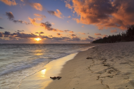 Sunset on the sandy beach of a tropical island photo