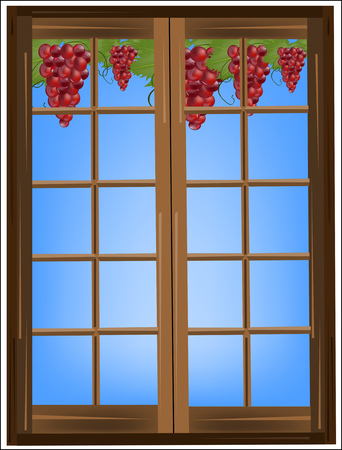 rich in vitamins: Vine and grapes outside the window