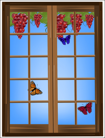 rich in vitamins: Vine and butterflies outside the window