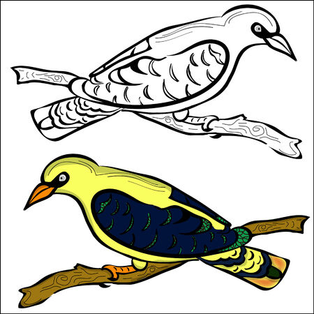 oriole: outline and painted oriole