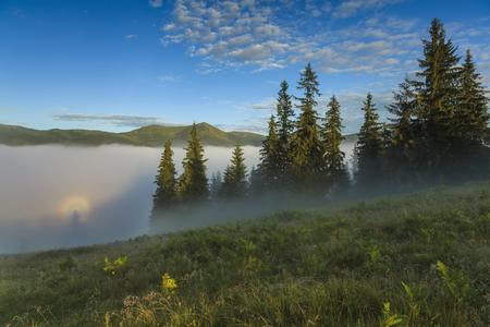 brocken: Optical illusion Brocken specter in the misty mountains