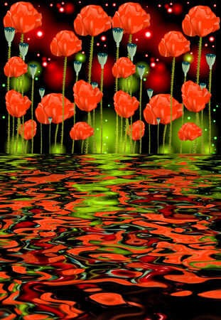 water reflection: Reflection of poppy flowers in water on glowing background