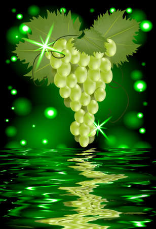 Reflection of a bunch of grapes in water on glowing background photo