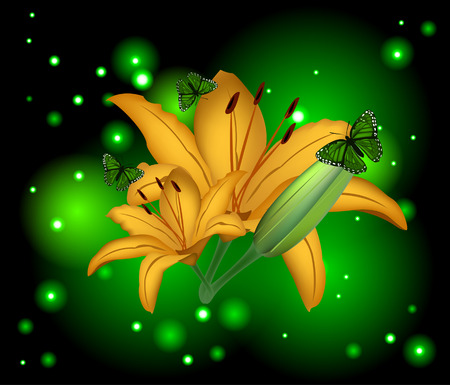 Beautiful flowers lily on a glowing background Vector