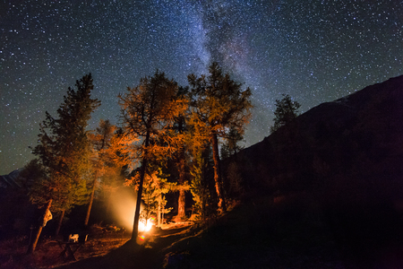 Holidays in the woods near the fire in the night star sky photo