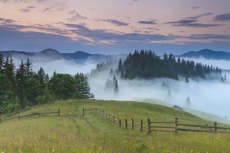 Beautiful misty dawn in the mountains. Carpathian Mountains. Ukraine.