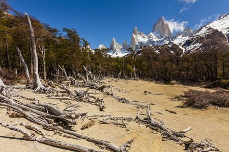 roy: Landscapes of South Argentina. Fitz Roy. Patagonia.