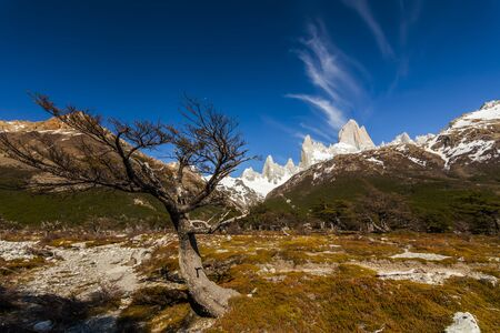 roy: Scenic view of Mount Fitz Roy. Patagonia. Argentina. Stock Photo