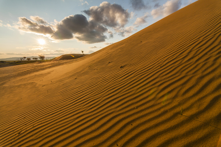 hummock: Beautiful desert landscape with sand dunes. Mongolia. Stock Photo