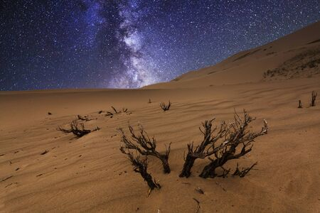 stellate: Magnificent starry sky over the desert landscape