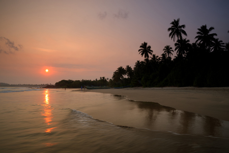 Tropical sandy beach with palm trees at sunset.