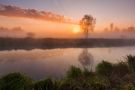 The first rays of the rising sun at misty river Banco de Imagens
