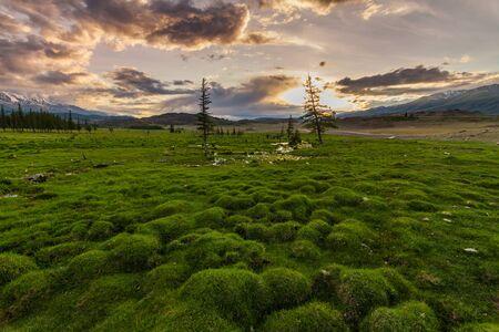 Russia, Altai mountains, Severo-Chui Range at summer day Stok Fotoğraf