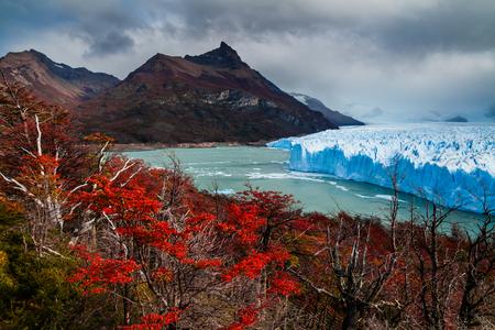 calafate: Glacier Perito Moreno National Park in autumn. Argentina, Patagonia