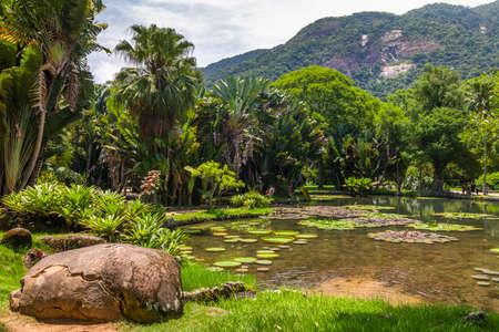 Jardim Botanico botanic gardens. Rio de Janeiro, Brazil Stock Photo
