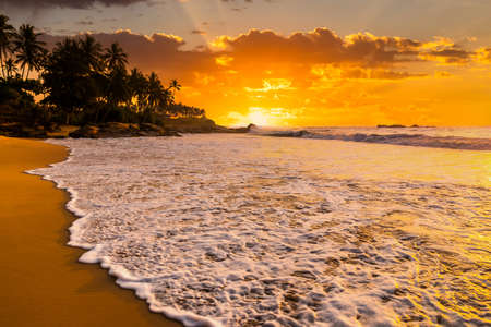 Romantic sunset on a tropical beach with palm trees. Vacation at sea Stock Photo