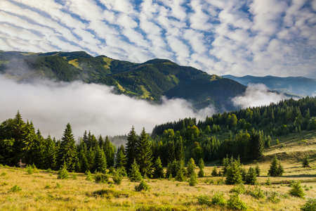 Misty dawn in the mountains in summer. Beautiful summer landscape in the Alps
