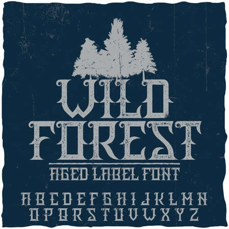 Vintage label typeface named Wild Forest. Good font to use in any vintage labels or logo.