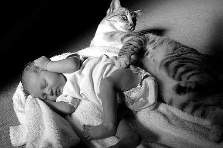 newborn baby sleeping next to a cat Stock Photo