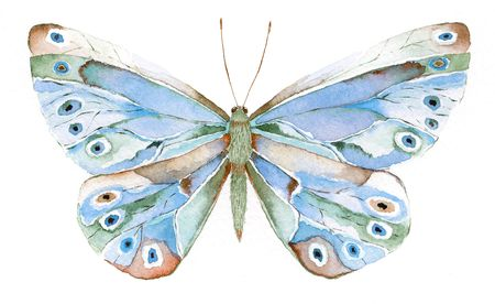 segmented bodies: watercolor painting of a blue and green fantasy butterfly