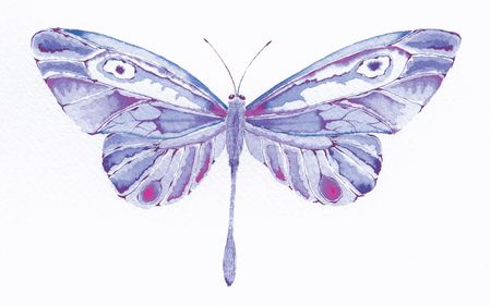 watercolor painting of a purple fantasy butterfly