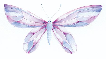 segmented bodies: watercolor painting of a purple and blue fantasy butterfly Stock Photo