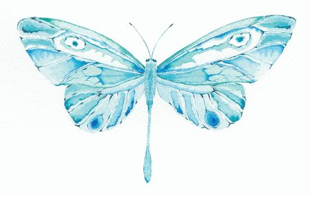 segmented bodies: watercolor painting of a turquoise and blue fantasy butterfly