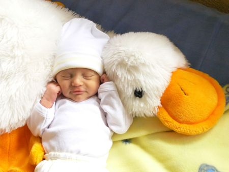newborn baby girl sleeping in her favorite soft toy duck