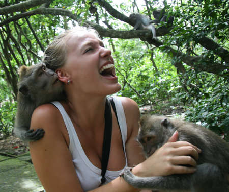 image of monkeys that attacked the woman. a woman yells, his mouth wide open photo