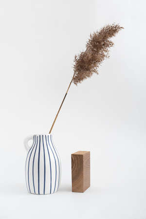 Dry reed beige branch in ceramic jug and rectangular wooden block on white background. Trend minimalistic balance composition. Boho or Scandinavian style poster in modern home interior.