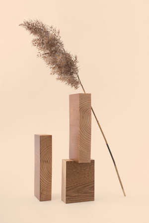 Dry reed branch and rectangular wooden blocks on beige background. Trend minimalistic balance composition. Boho or Scandinavian style poster in modern home interior