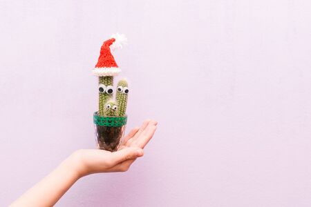 Cactus with eyes. At the top of the cactus is wearing a Santa Claus hat. Christmas cactus. Creative christmas concept. New Year. Funny cactus in the hand of a girl Reklamní fotografie