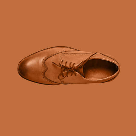 Mans Shoe on a brown background. Mens fashion. Minimal style.