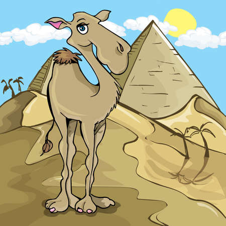 Cartoon camel in front of a pyramid in the desert Vector