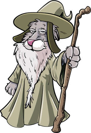 dog costume: Cartoon cat wizard with staff. Isolated on white