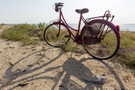 Pink bicycle parked at the beach near the sea.