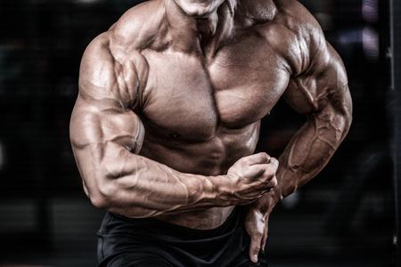 Handsome Macht athletischen Mann auf Diät-Training Pumpen bis Muskeln mit Hantel und Hantel. Starker Bodybuilder mit sechs Packungen, perfekte Abs, Schultern, Bizeps, Trizeps und Brust Standard-Bild - 79226490