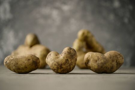 Ugly potato in the heart shape on a gray background. Funny, unnormal vegetable or food waste concept Horizontal orientation Stockfoto