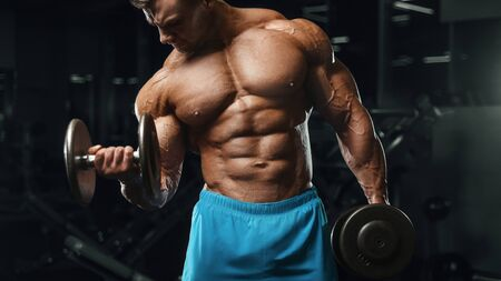 Bodybuilder handsome strong athletic rough man pumping up biceps muscles workout fitness and bodybuilding healthy concept background - muscular fitness men doing arms exercises in gym torso
