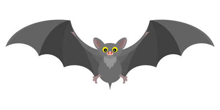 gray mystical bat flat fabulous interesting Standard-Bild - 114983455