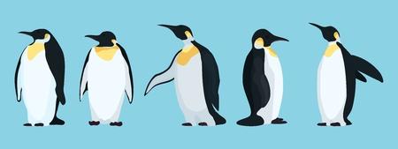 personnages de pingouins lumineux dans différentes poses.stock illustration vectorielle Vecteurs