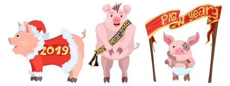 New three bright bright New Year pigs selection Illustration
