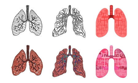 a selection of drawings of human lungs in different styles of drawing