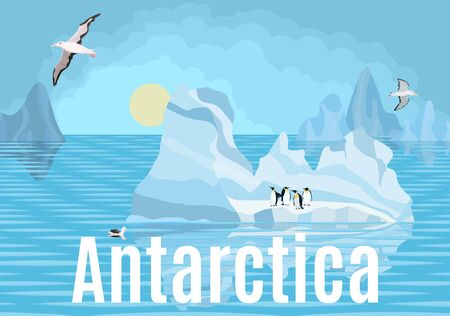 Antarctica penguins and albatrosses on icebergs by the sea 向量圖像