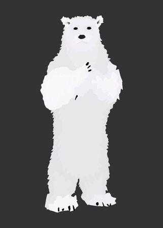 polar bear stands on its hind legs. wild animal. vector
