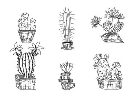 selection of cacti in pots sketch doodle drawings. vector