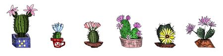 a selection of cacti with potted flowers. doodle sketch drawing vector