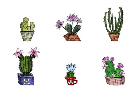 six cacti on a white background. doodle sketch drawing vector